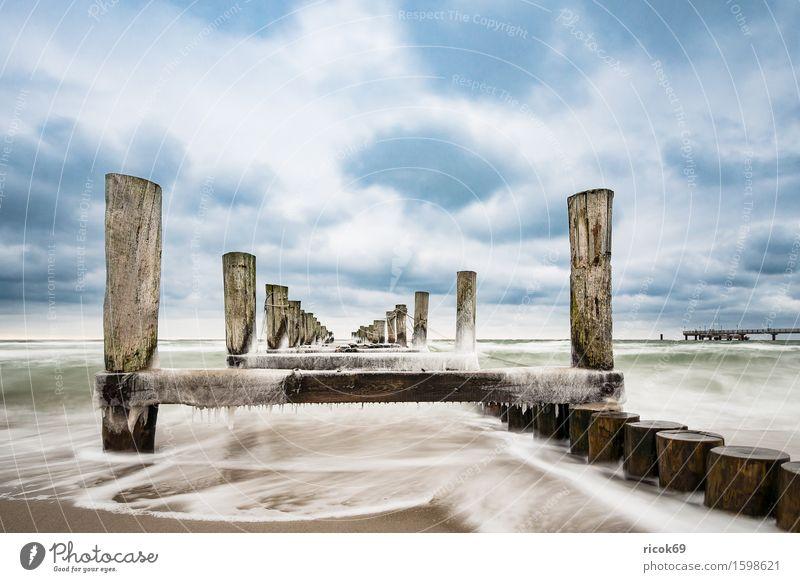 Buhne an der Ostseeküste Erholung Ferien & Urlaub & Reisen Tourismus Strand Winter Natur Landschaft Wasser Wolken Küste kalt blau Idylle ruhig Eis Zingst