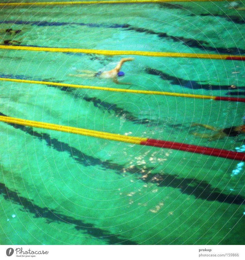 Sport frei Mensch Wasser Sport Spielen Freizeit & Hobby Schwimmen & Baden Streifen Schwimmbad Schwimmsport Fitness sportlich Sport-Training Turnen Bahn Wassersport Kraulstil schwimmen