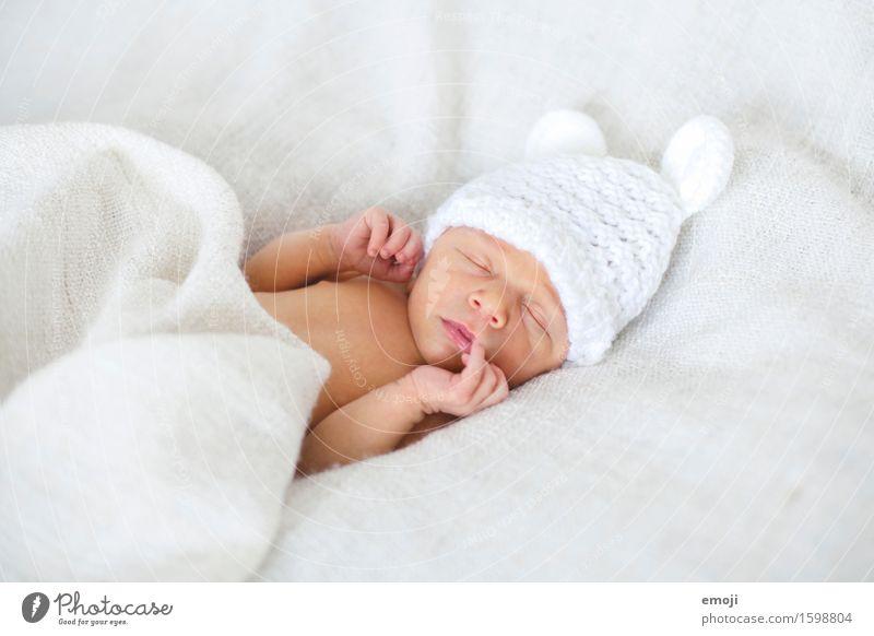 Newborn Bett Baby Kindheit 1 Mensch 0-12 Monate Mütze kuschlig klein schlafen träumen Farbfoto Innenaufnahme Hintergrund neutral Tag Schwache Tiefenschärfe