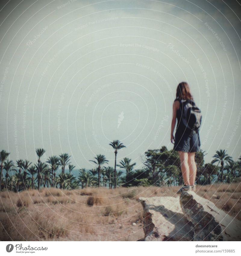 La Añoranza. Frau Mensch Natur Jugendliche Himmel Pflanze Sommer Ferien & Urlaub & Reisen feminin Stein Erwachsene wandern Abenteuer Aussicht Wüste Sehnsucht