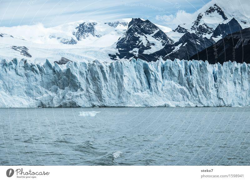 Eisbergfabrik Berge u. Gebirge Schneebedeckte Gipfel Gletscher Küste gigantisch kalt blau weiß Klima Vergänglichkeit Perito Moreno Gletscher Am Rand