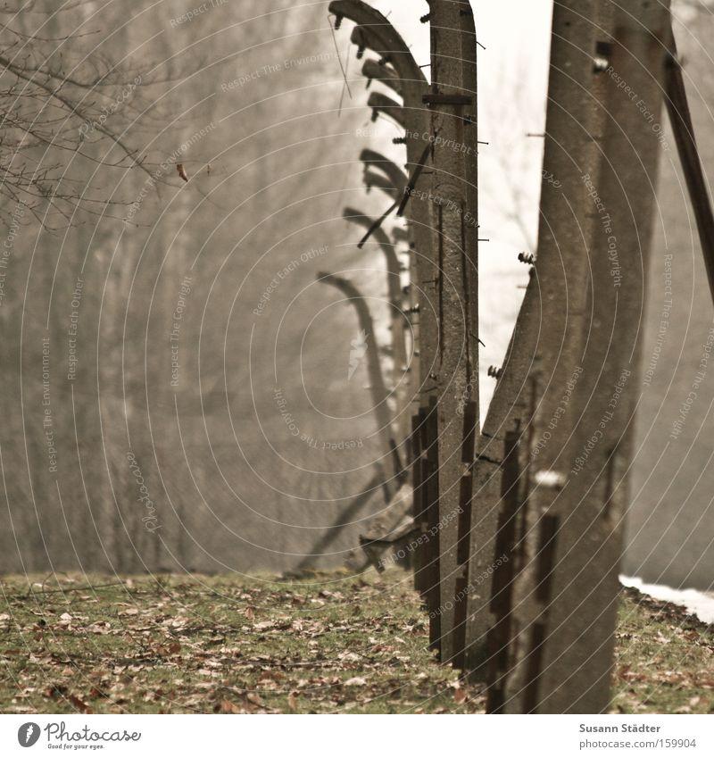 1945 Befreiung Konzentrationslager Buchenwald Angst Verfolgung Tod Mord Stacheldraht Rost Metall Metallwaren Stein Zaun Schutz Sicherheit erinnern Denkmal