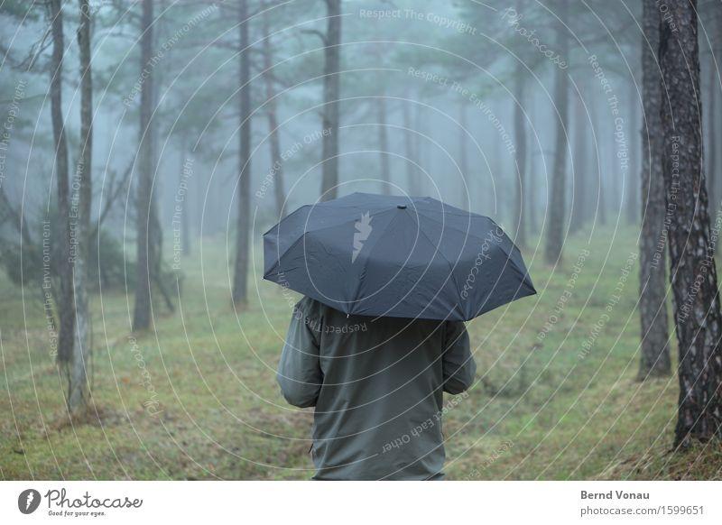 Im Regen stehen Mensch Rücken 1 Umwelt Natur Pflanze Herbst Klima Nebel Baum Gras Wald atmen Erholung Schirm dunkel Beerdigung grau Spaziergang Einsamkeit