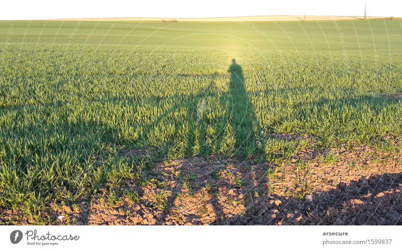 Frühling mit Fahrrad Zufriedenheit ruhig Freizeit & Hobby Ausflug Ferne Freiheit Fahrradtour Fahrradfahren 1 Mensch Umwelt Natur Landschaft Pflanze Erde Himmel