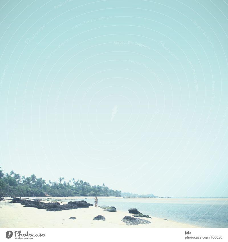 fernweh Wasser Meer blau Strand Ferien & Urlaub & Reisen ruhig Einsamkeit Ferne Freiheit Sand hell Frieden Indien Palme friedlich