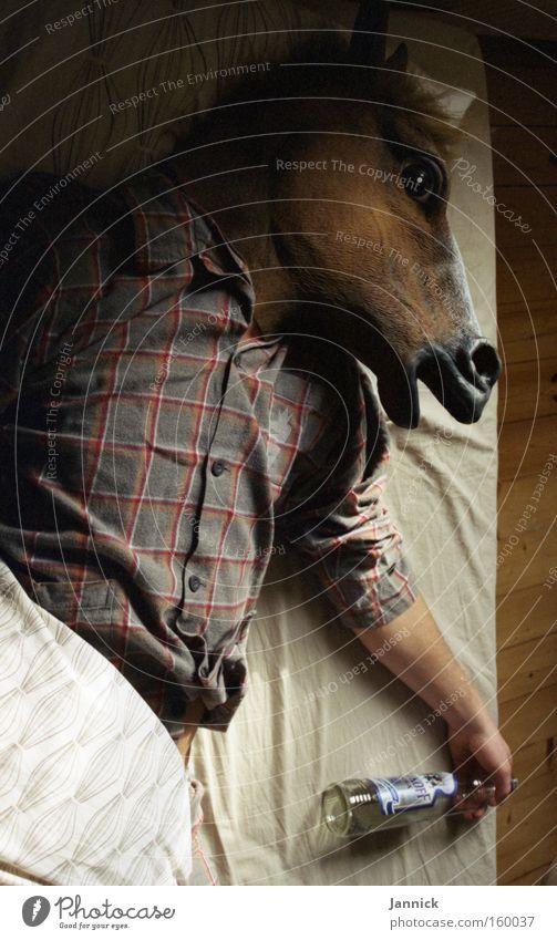 Das blaue Pferd Mann blau Tier schlafen Pferd trinken Bett Maske Karneval Getränk Alkoholisiert Alkohol Säugetier Ernährung Schlafzimmer Spirituosen