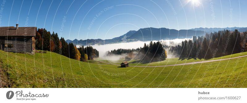 Herbststimmung oberhalb von Egg im Bregenzerwald Natur Ferien & Urlaub & Reisen Baum Sonne Erholung Landschaft Ferne Berge u. Gebirge Umwelt Wiese Gras Holz