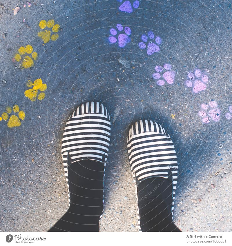 Paw Prints and stripy Feet Fuß 1 Mensch stehen Freundlichkeit mehrfarbig Fußspur gelb rosa Pfote Hund Katze Streifen verrückt Farbfoto Außenaufnahme