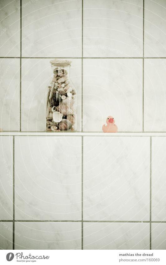 NICHT OHNE MEINE QUIETSCHEENTE schön Freude Vogel Glas Bad Schwimmen & Baden Spielzeug Fliesen u. Kacheln Stillleben Muschel Ente Gummi Badeente
