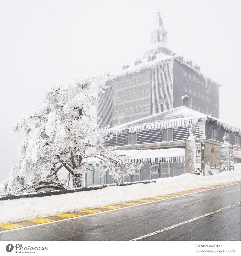 gefrorenes haus Schnee Winter Baum Haus kalt Eis Pass Spanien