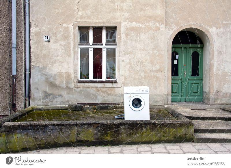 Waschtag Haus Waschmaschine Tür Fenster Hund Dienstleistungsgewerbe