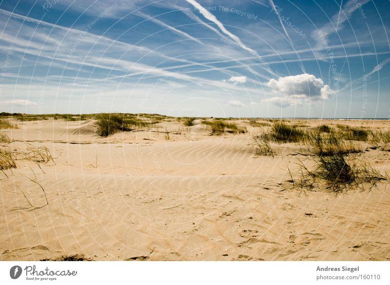 Urlaub!!!! Himmel Meer Sommer Strand Ferien & Urlaub & Reisen Wolken Erholung Sand Küste Stranddüne Nordsee Dänemark Kondensstreifen