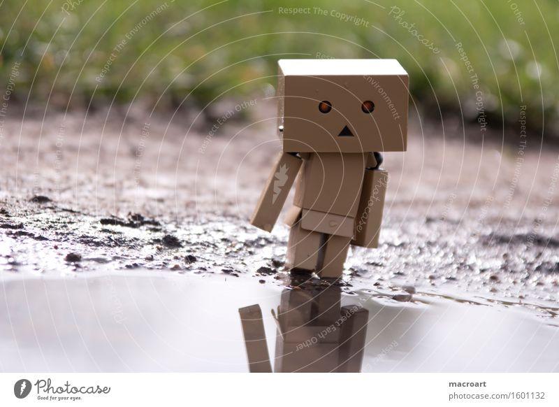 Spieglein, Spieglein.... Reflexion & Spiegelung Roboter Wasser Gewässer Pfütze Karton maskulin Figur Spielfigur Auge Gesicht Natur natürlich danboo danboard