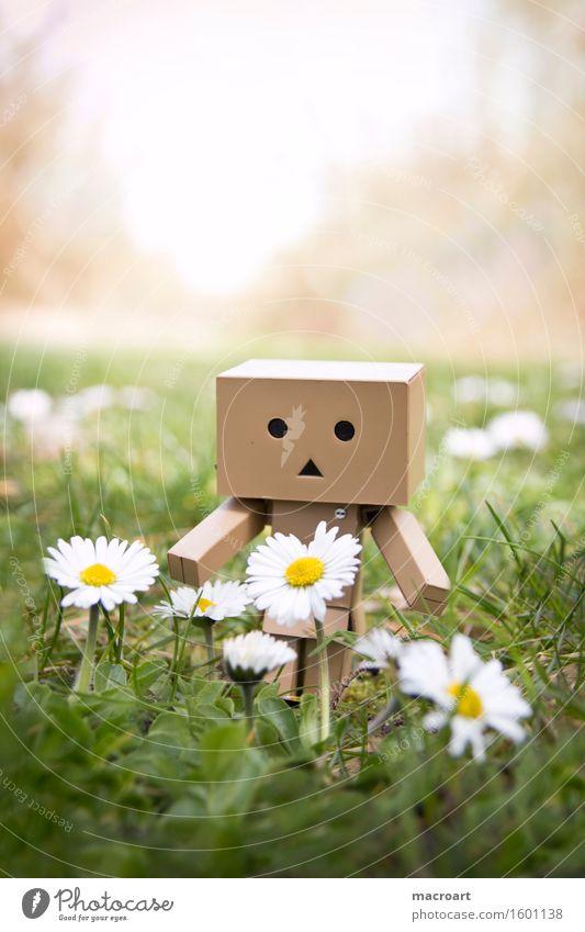 Mini Roboter Wiese Gras Figur Blumenwiese Frühling Sommer danboo danboard Karton Gesicht Kreis Dreieck grün Natur natürlich Außenaufnahme männchen Spielzeug