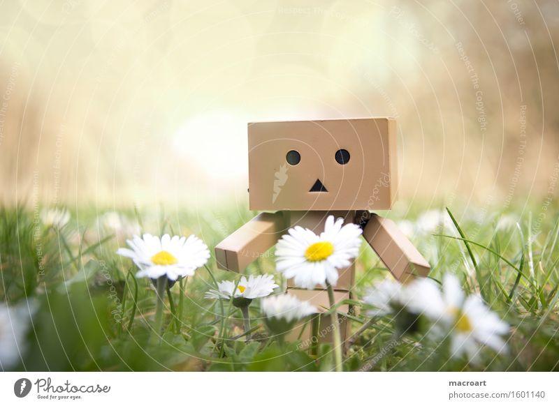 Roboter Wiese Gras Figur Blumenwiese Frühling Sommer danboo danboard Karton Gesicht Kreis Dreieck grün Natur natürlich Außenaufnahme männchen Spielzeug Spielzug