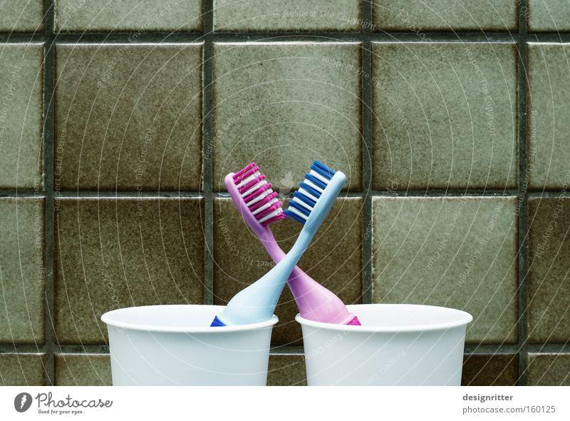 Urlaub zu zweit Liebe paarweise Reinigen Sauberkeit Partner Körperpflege Partnerschaft Zärtlichkeiten Körperpflegeutensilien Zahnbürste Zahnpflege Karies
