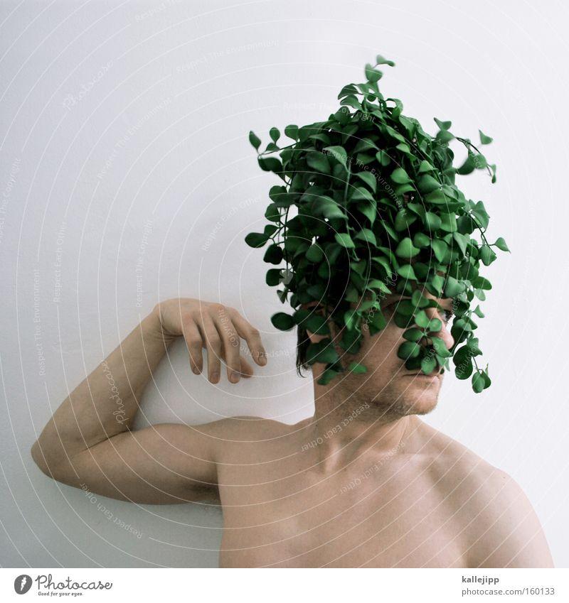 naturlocken Waldmensch Mensch Haare & Frisuren Barock Perücke Pflanze Klimaschutz grün Natur nachhaltig Umwelt verrückt Umweltschutz