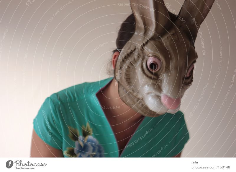 Horoskop Hase Hase & Kaninchen Osterhase Ostern Tier lustig stark Frau Maske Kostüm Karneval Freude China