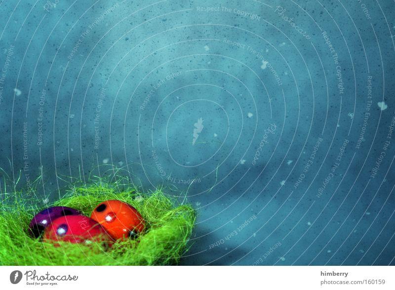 osterpetrol Farbstoff Kunst Hintergrundbild Lebensmittel Ostern Dekoration & Verzierung Handwerk Ei Nest Osterei Kunsthandwerk Handarbeit Osternest