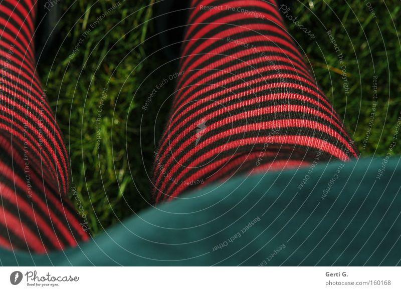 DickBeinChen Mensch grün Wiese Gras Beine Bekleidung Perspektive Rasen Streifen gestreift Ringelstrümpfe rot-schwarz