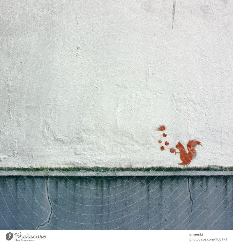 Eichhörnchen Wand Haus Nuss Futter Fressen Vorrat Straßenkunst Graffiti Appetit & Hunger Akrobatik jonglieren Zirkus Wandmalereien Freizeit & Hobby