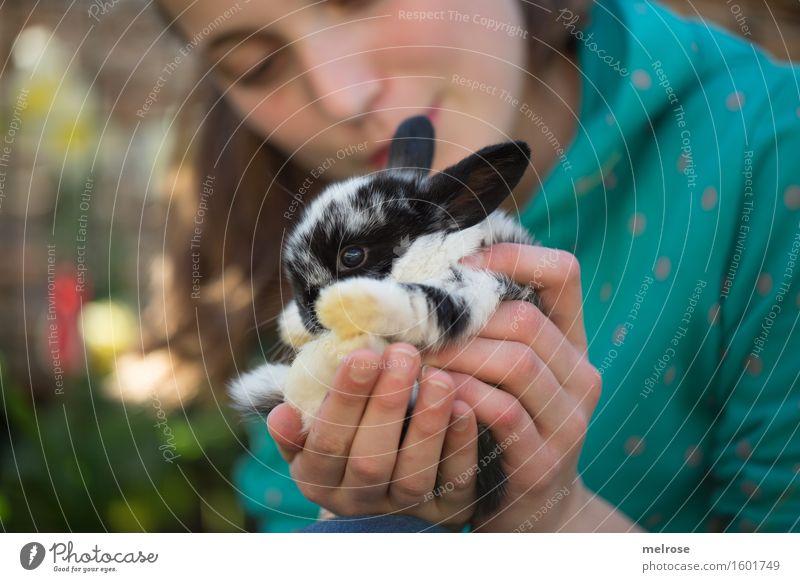 I versteck mi ... Mädchen Gesicht Hand Finger Oberkörper 1 Mensch 8-13 Jahre Kind Kindheit Blume Garten Tiergesicht Fell Pfote Zwergkaninchen Hasenbaby