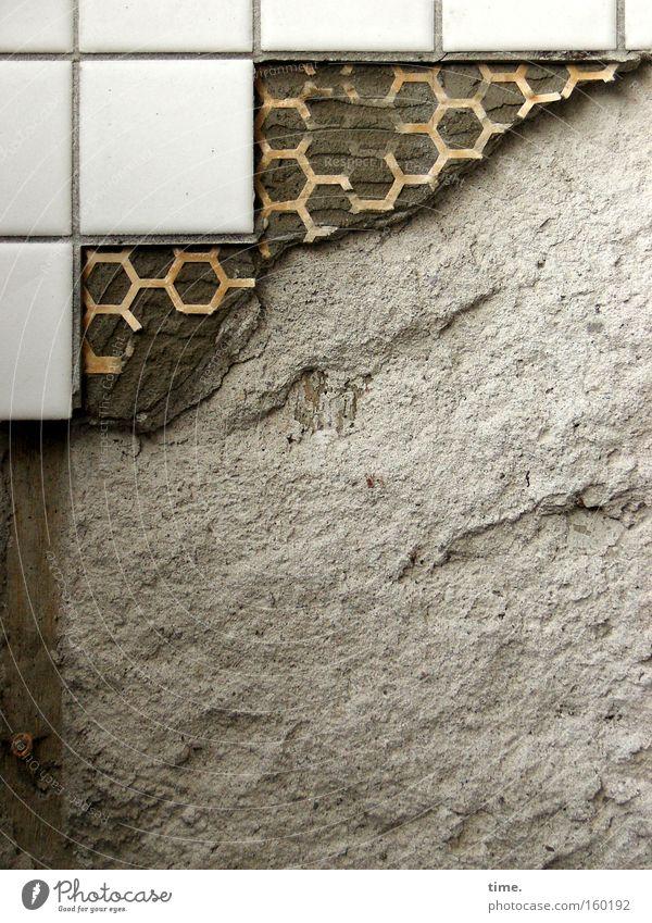 Bekloppte Wand (II) Gedeckte Farben Innenaufnahme Handwerk Mauer Streifen kaputt braun weiß Fliesen u. Kacheln Sanieren schmuddelig Quadrat Ecke verbinden