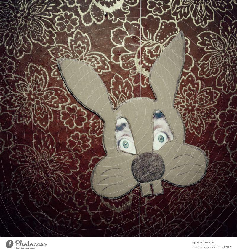 Die Osterfratze Freude Auge lustig Ostern Maske Tapete skurril Hase & Kaninchen Humor Karnevalskostüm verkleiden Osterhase