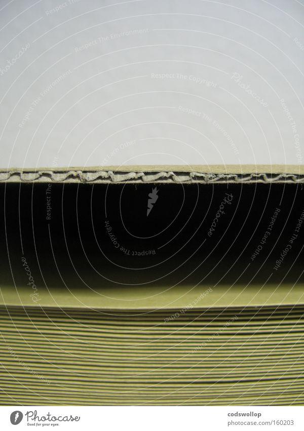 wall | c-flute | envelopes Wand Arbeit & Erwerbstätigkeit Kommunizieren Dienstleistungsgewerbe Post Karton Verpackung Briefumschlag