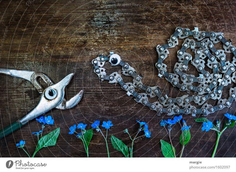 Eigentlich mag ich dich! Eine Zange und eine Kettensäge mit Augen undVergissmeinnicht - Blumen auf einem Holz- Hintergrund Arbeit & Erwerbstätigkeit Beruf