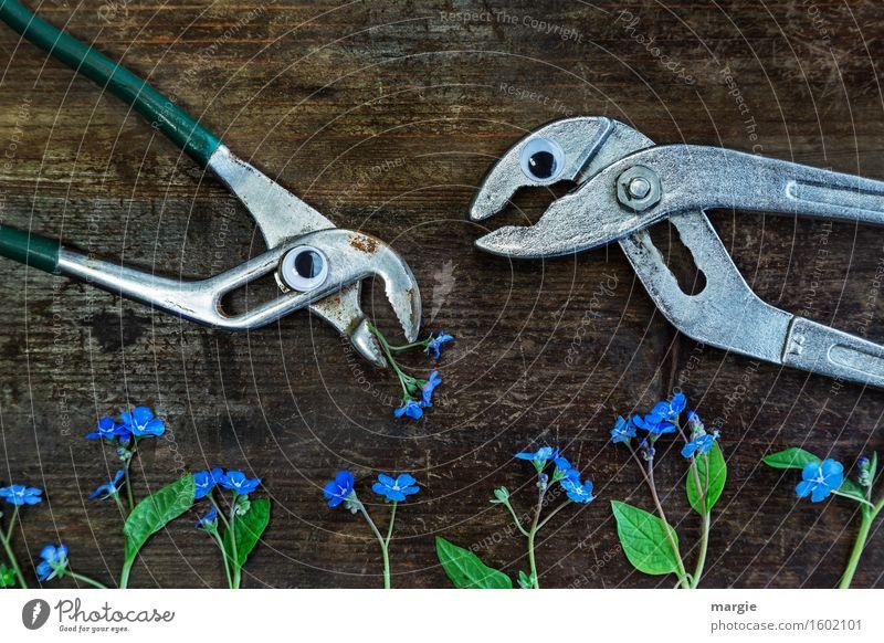 Denkst du gerade das gleiche wie ich? Handwerker Gartenarbeit Arbeitsplatz Baustelle Dienstleistungsgewerbe sprechen Blume Blüte Tier 2 Essen blau braun grün