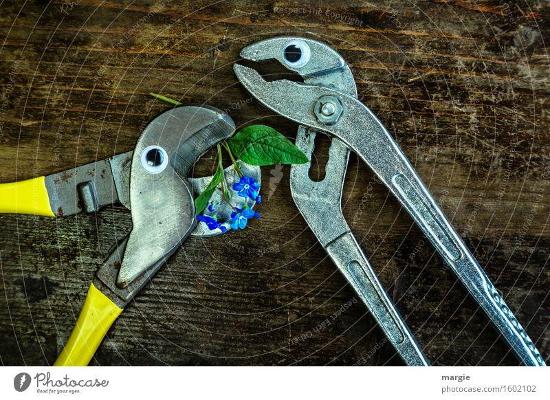 Ich kann dich nicht vergessen! Zwei Zangen mit Augen auf einem Holztisch mit Vergissmeinnicht - Blumen Arbeit & Erwerbstätigkeit Beruf Handwerker Arbeitsplatz