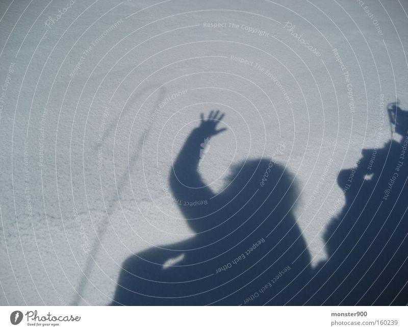 Schneeschatten Schweiz Schlitten schön Schatten Winter Freude Gruß Peitsche