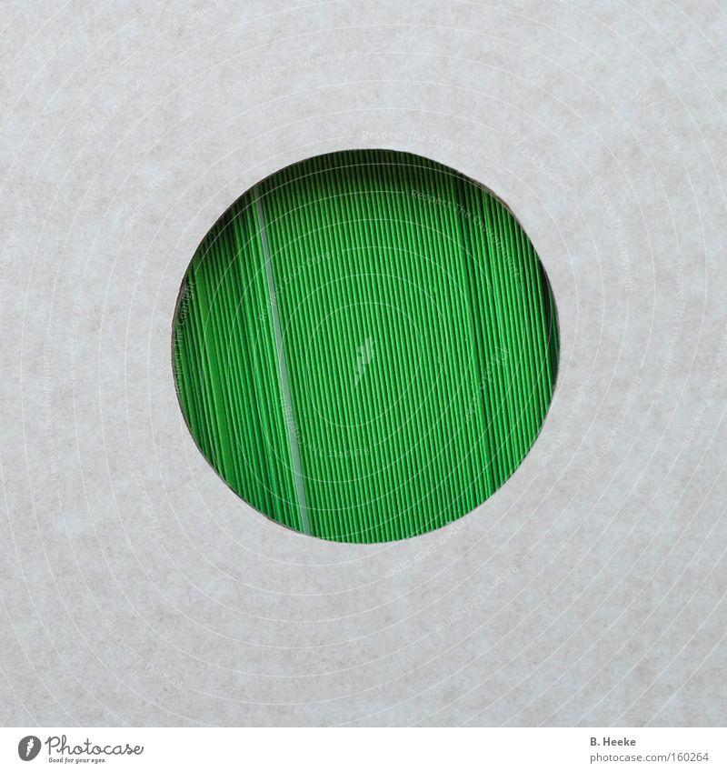 Grünumschlag grün Papier Kreis rund nah Quadrat Kasten Sammlung Karton Briefumschlag Einblick