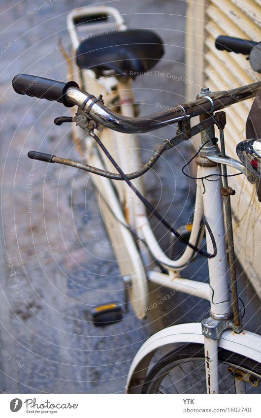 I want to ride my bicycle, I want to ride my bike! Maschine Technik & Technologie Verkehr Verkehrsmittel Personenverkehr Fahrradfahren Straße trendy historisch