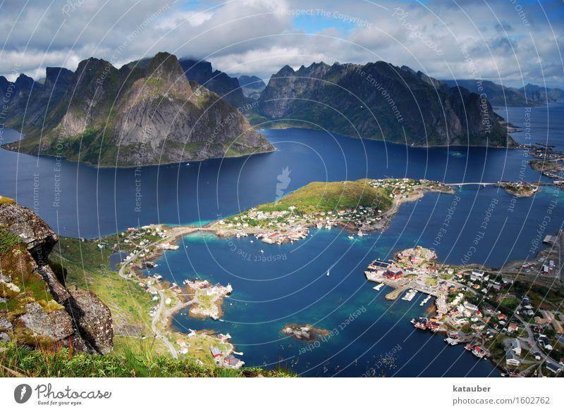Reinebringen Natur Landschaft Wiese Felsen Berge u. Gebirge Gipfel Unendlichkeit hoch schön Lofoten Norwegen Reinefjorden Reine Rorbuer Aussicht fantastisch