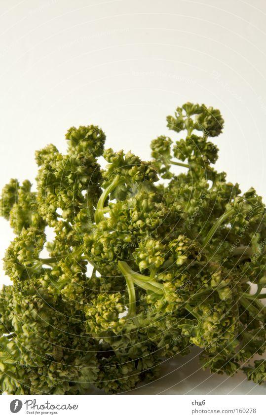 Petersilienberg weiß grün Ernährung Gesundheit Küche Kräuter & Gewürze Zutaten Vegetarische Ernährung Petersilie
