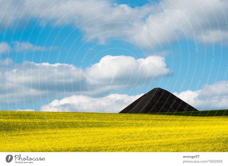 Land der Pyramiden IV Bergbau Umwelt Landschaft Himmel Wolken Frühling Schönes Wetter Pflanze Nutzpflanze Rapsfeld Feld blau gelb grau schwarz weiß Gipfelkreuz