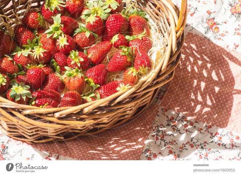 Korb mit Erdbeere Frucht Essen Diät Gesunde Ernährung Sommer Natur Pflanze Blume Blatt frisch hell klein grün rosa rot weiß Erdbeeren Feinschmecker Wahl