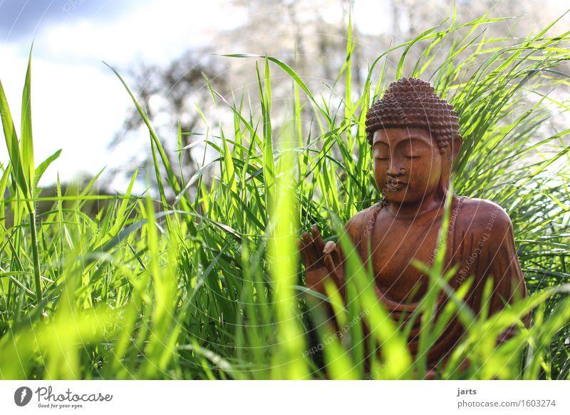 erwacher Mensch ruhig Wiese Gras Religion & Glaube Holz Zufriedenheit sitzen Gelassenheit Meditation Figur Gebet Optimismus Willensstärke geduldig