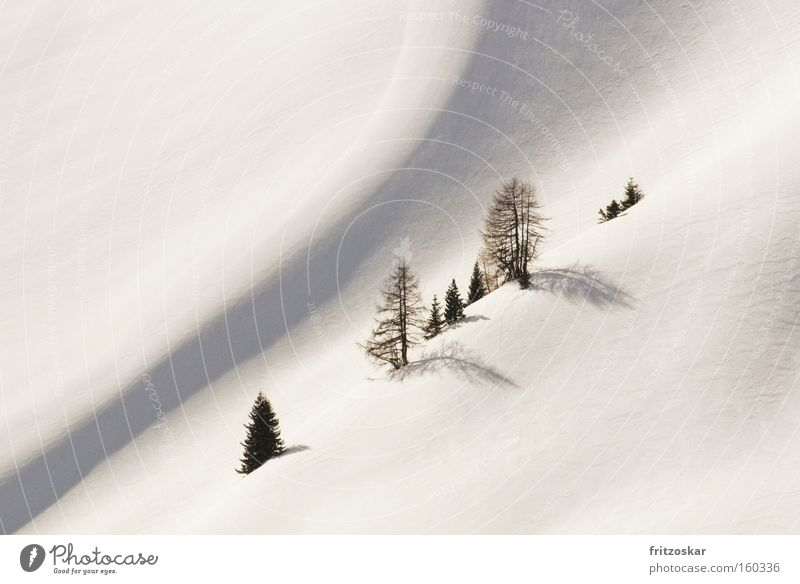 Seilschaft weiß Baum Einsamkeit Winter Berge u. Gebirge Schnee diagonal sanft Steigung