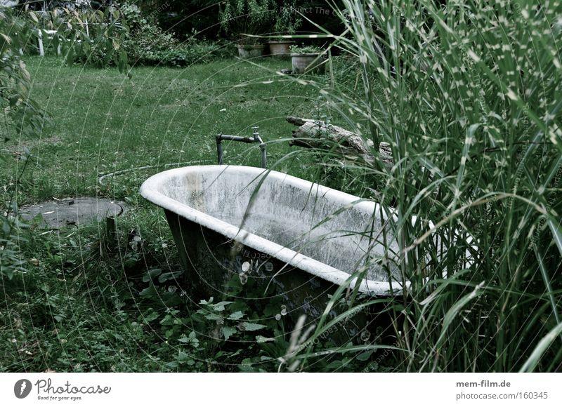 vollbad ohne schaum Wasser Garten dreckig Wellness Bad Sauberkeit trocken Badewanne Landwirtschaft Bewässerung verwildert