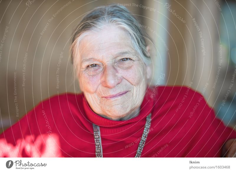 Portrait einer glücklichen Seniorin Gesundheit Leben Mensch Weiblicher Senior Frau Großmutter Gesicht 1 60 und älter alt authentisch Glück Zufriedenheit