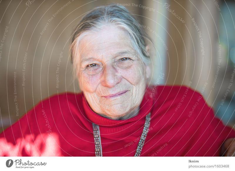Portrait einer glücklichen Seniorin Mensch Frau alt Gesicht Leben Gesundheit Glück Zufriedenheit authentisch Erfolg 60 und älter Lebensfreude Weiblicher Senior