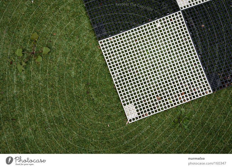 Eckig trifft Kunstrasen v.s. Löwenzahn Natur Spielen Ecke Rasen Sportrasen Dinge Kunststoff kämpfen brechen Spielplatz Überleben netzartig unnatürlich