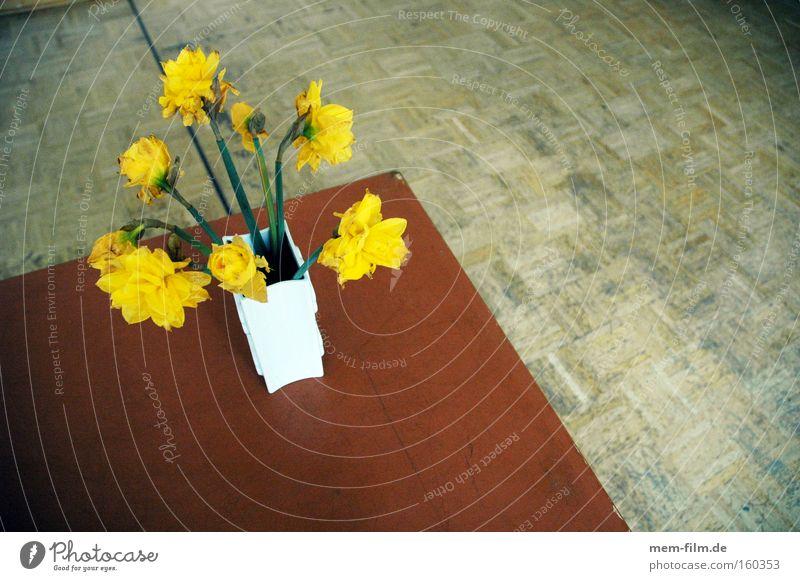 narzissen Narzissen gelb Gelbe Narzisse Tisch Vase blumen frühling frühlingsgruss