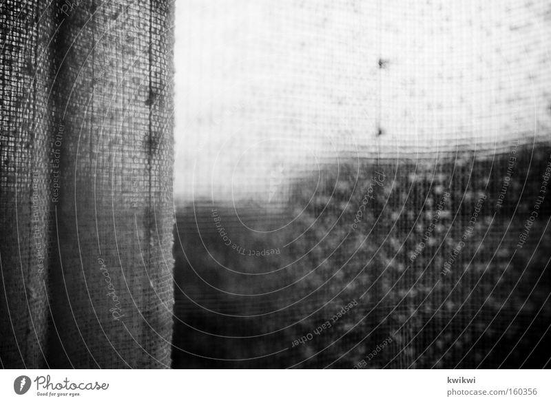 es ist die gardine nicht der regen Häusliches Leben Fenster Stoff grau Gardine Aussicht spionieren Fensterscheibe Scheibe gehäkelt Dinge Schwarzweißfoto