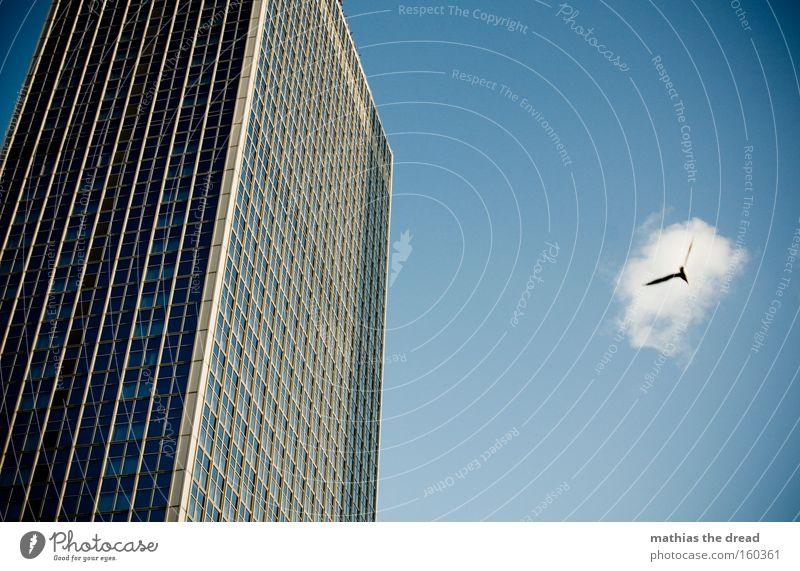 KOMMT EIN VOGEL GEFLOGEN Vogel fliegen Lebensraum Tier Hochhaus hoch groß blau Himmel majestätisch Fenster Fassade Linie Glasscheibe Luftverkehr