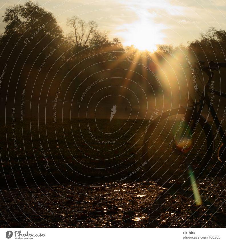 Morgenstund' ... Herbst Garten Park Fahrrad gold Sonnenaufgang Teich Himmelskörper & Weltall