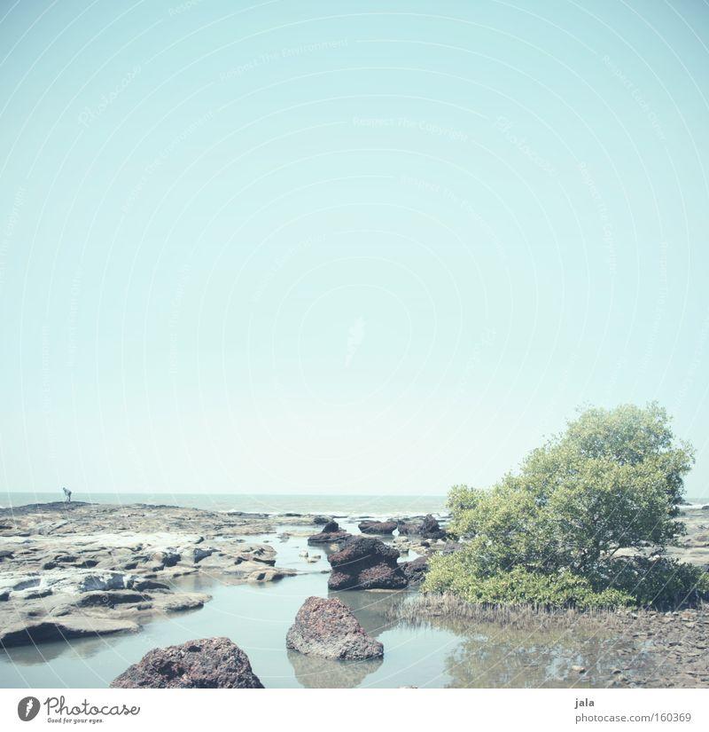 Steine am Meer Wasser blau Strand Ferien & Urlaub & Reisen ruhig Einsamkeit Ferne Freiheit Sand hell Sträucher Indien